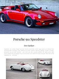Porsche 964 Carrera 2 Speedster RS - GT Porsche Nov 2010